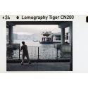 Lomography Tiger 110 Color Pocket Film 200-24