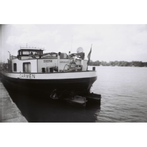 Lomography Earl Grey B&W 100 135-36 / 3-pack
