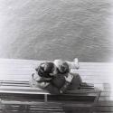 Lomography Earl Grey B&W 100 120 / 3-pak