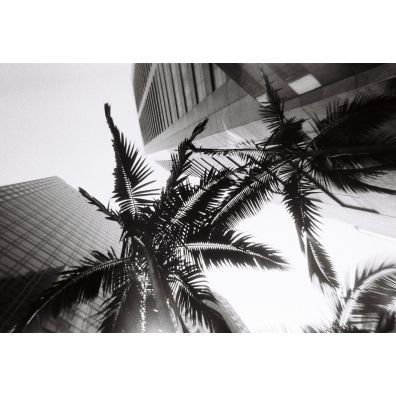 Lomo Wegwerpcamera Zwart-Wit / 36 opnames