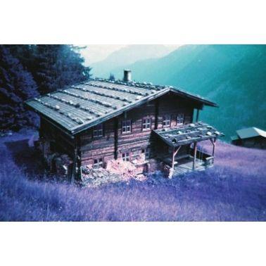 Lomo Single Use Camera Purple / 36 exposures