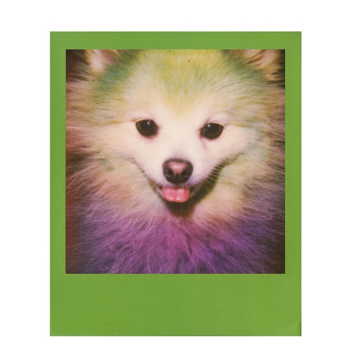 Polaroid 600 Color Instant Film - Color Frames