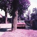 LomoChrome Purple XR 100-400 135-36