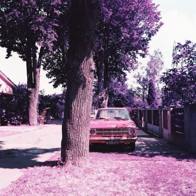 LomoChrome Purple XR 100-400 120 (2019)
