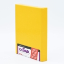 Kodak T-MAX 100 4x5 INCH / 10 sheets