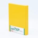 Kodak TRI-X 320 4x5 INCH / 10 sheets