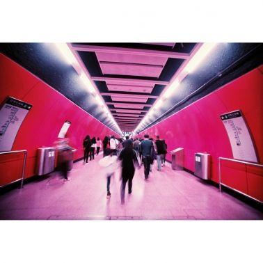Lomo Analogue Duet - LomoChrome Purple-Metropolis 35mm Film / 2-pack